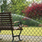 Chain Link Fence With Bench in Park