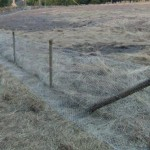 Rabbit fencing with netting in field