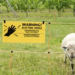 Electric fencing warning sign on sheep netting