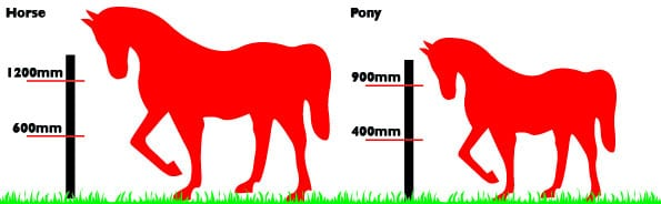 Diagram of horse and pony wire